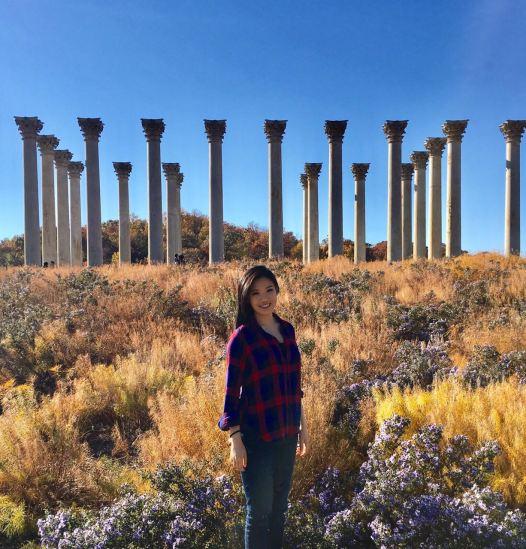 National Arboretum Pillars